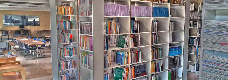 Biblioteka GSW