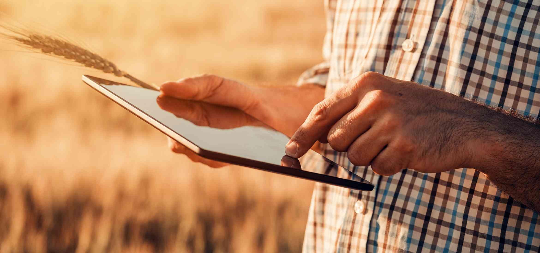 Uwarunkowania i organizacja rolnictwa -studia podyplomowe
